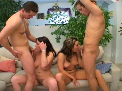 Picture A couple of bisexual couples CLIP