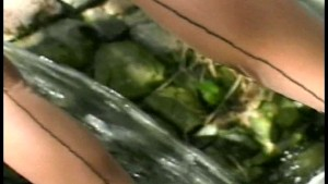 Lanie has great experience PT. 1