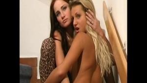 Lesbian glamour girls in spandex