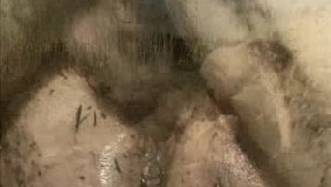 Mature gets pounded in mud