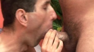 Loads shared by gay guys