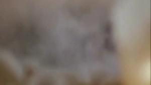 Joan Severance - Lake Consequence