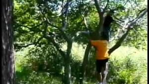 Swinging in the trees - Gentlemens Video