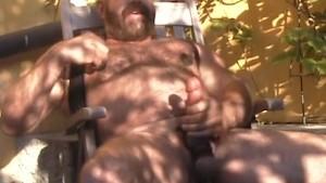 Muscle Bear Solo
