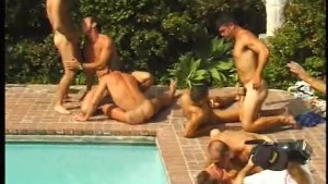There is alot of dicks around the pool- Pacific Sun Entertainment