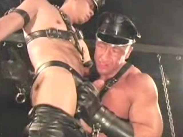 Watch free male Leather XXX clips and Leather gay tube