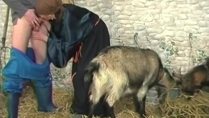 crazy old goat lady gets rawdogged - Telsev