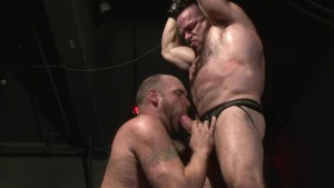 BDSM Bears - Factory Video