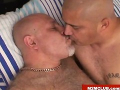 Daddy bear fucking a stocky latino