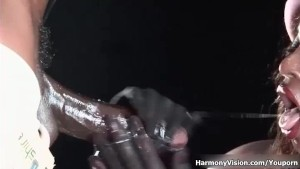 HarmonyVision Interracial Fetish Fun