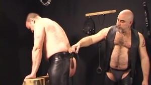 Bear Bondage
