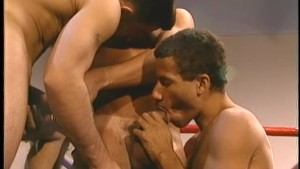 Boxers get hot and heavy in the ring - Stallion Video