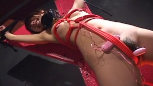 Japanese babe doesn t seem annoyed after getting bound and toyed uncensored