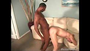 Hung white twink gets assbanged by blacks